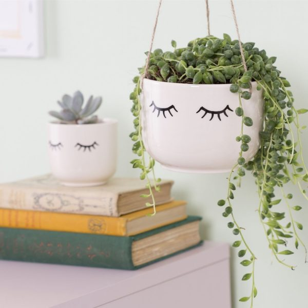 String-of-pearls-houseplant-in-eyes-shut-hanging-plant-pot-online-shop-iris-co