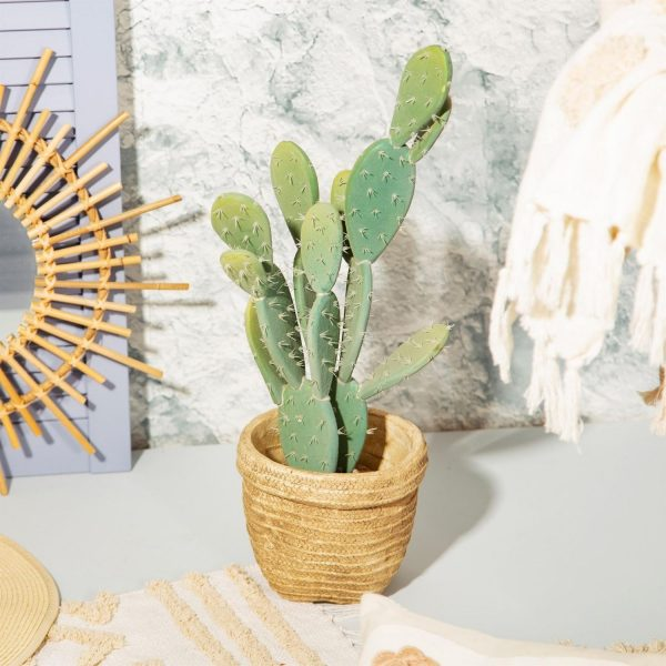 Sierra cement plant basket with cactus
