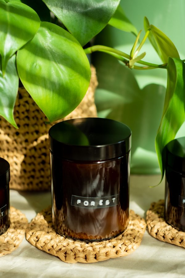forest soy vegan scented candle on tree trunk