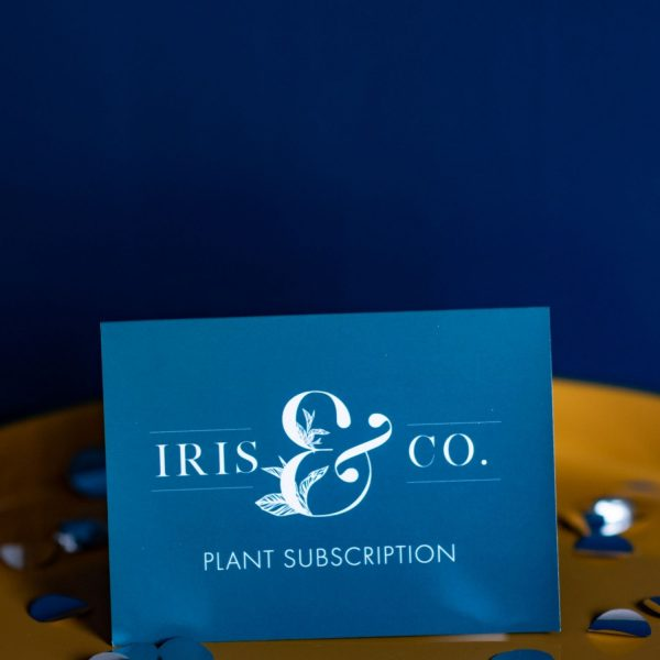 Plant subscription vouchers iris co houseplants