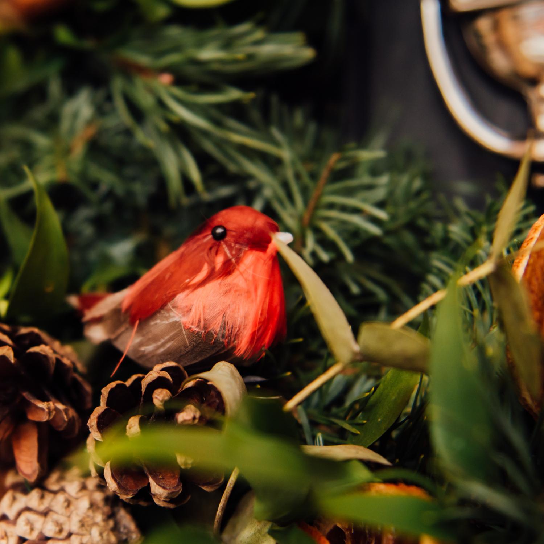 close up of bird real Christmas wreath iris co