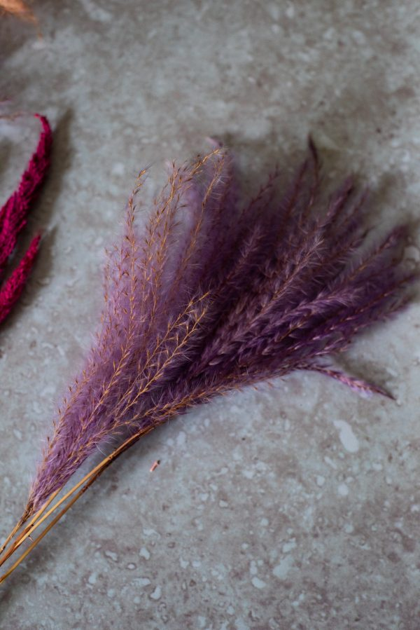 dried miscanthus grass lilac on wood