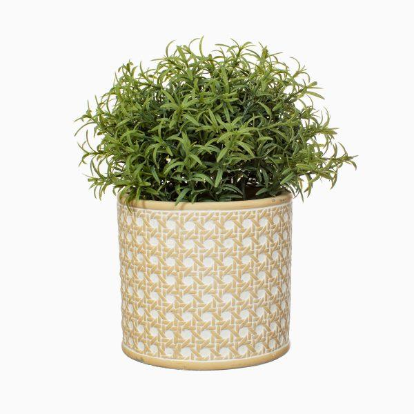rattan concrete plant pot with plant inside