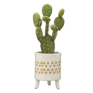 scan print plant pot on legs with cactus