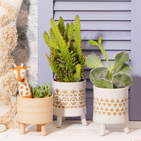 3 scandi print pots with plants