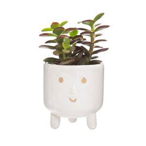 smiley face plant pot