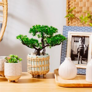blue rattan plant pot with legs on a side table with a bonsai tree in