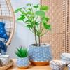 blue painted ceramic plant pot