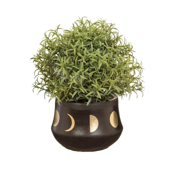 black moon phase plant pot on a white background with a plant in it