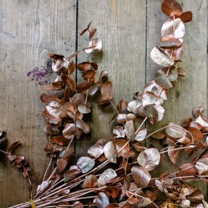 copper painted metallic preserved eucalyptus