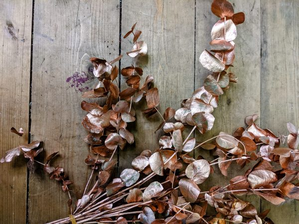 copper painted metallic preserved eucalyptus