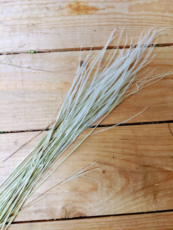dried fluffy grass on a wooden desk